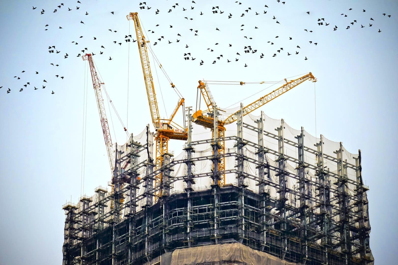 bird-architecture-skyscraper-urban-construction-tower-103364-pxhere.com_